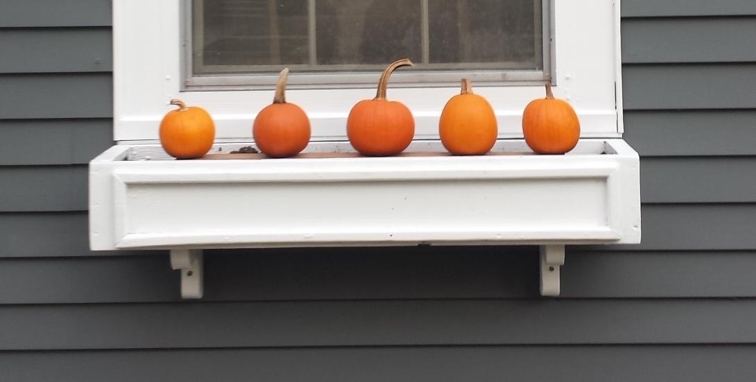 1025_pumpkin